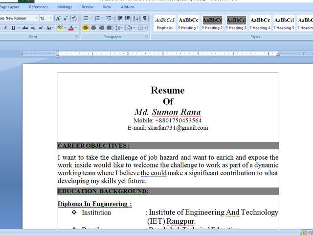 Professional CV Format DOC Download