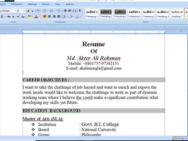 Professional Resume DOC Download